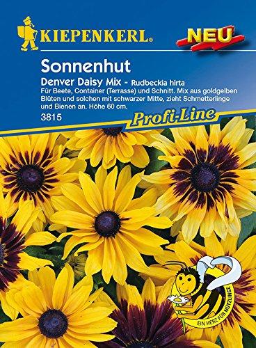 Blumensamen - Sonnenhut Denver Daisy-Mix von Kiepenkerl