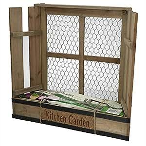 pflanzkasten f r kr uter mit basilikum samen 40 x 37 cm f r k che balkon fensterbank amazon. Black Bedroom Furniture Sets. Home Design Ideas