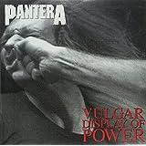 Vulgar Display of Power 180 Gram [Vinyl LP]