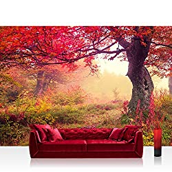 Non-woven Photographic Wallpaper Wall Paper – Top Quality Premium Plus Photo Wallpaper Wall Picture XXL Decorative Wall Picture Wall Mural Photo Wallpaper Forest Trees Autumn – No. 258