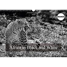 Africa in Black and White 2017: Unusual Pictures of Kenya's Fauna