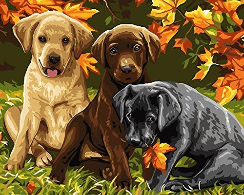 DIY Digital Leinwand-Ölgemälde Geschenk für Erwachsene Kinder Malen Nach Zahlen Kits Home Haus Dekor - Hunde 40*50 cm -