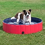 Doggy Pool das Planschbecken für  Hunde (160*30cm) - 5