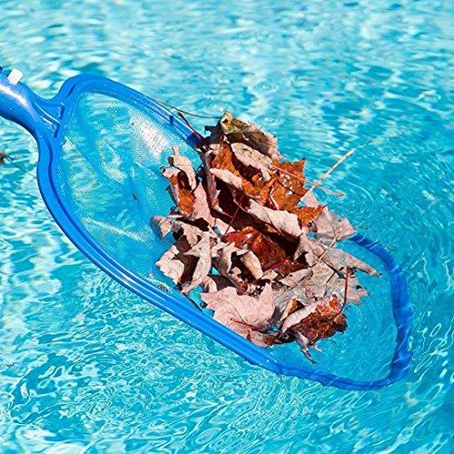 Deluxe Leaf Rake (Schwimmbeckenpflege Profi Blatt Rake Mesh Frame Net Skimmer Reiniger Schwimmbad Spa Tool Müll Fang Netz)