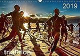 TRIATHLON 2019 (Wandkalender 2019 DIN A3 quer): Triathlon Kalender 2016 (Monatskalender, 14 Seiten ) (CALVENDO Sport)
