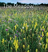 Meadow: An English Meadow Through the Seasons