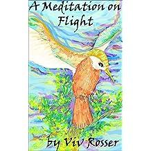 A Meditation on Flight (English Edition)