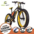 RICH BIT®TP012 1000W Electric Bicycle eBike Cruiser Bicycle Cycling 48V 17Ah High Capacity Battery 21 Speed 7 Speed Suspension Fork Dual Mechanical Brake, 4.0Fat Tire Sled Shimano Rendezvous Endurance, New Fashion Painting, Ladies and Gentlemen