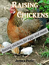 Chickens: Raising  Chickens, Choosing The Best Chickens, Chicken Feeding & Care (English Edition)