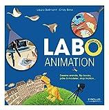 Labo animation: Dessins animés, flipbooks, pâte à modeler, stop motion...