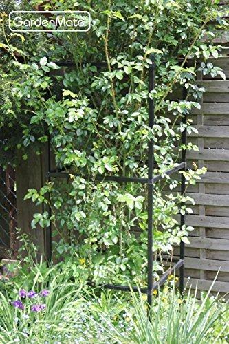 GardenMate® Rankhilfe Ranksäule Rankgerüst erweiterbar - 1 Modul 50x50x50cm