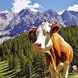 Alpen Kuh - Kuhservietten 33x33 cm