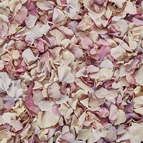 biodegradable-hydrangea-petal-wedding-confetti-1-pint-vintage-mix
