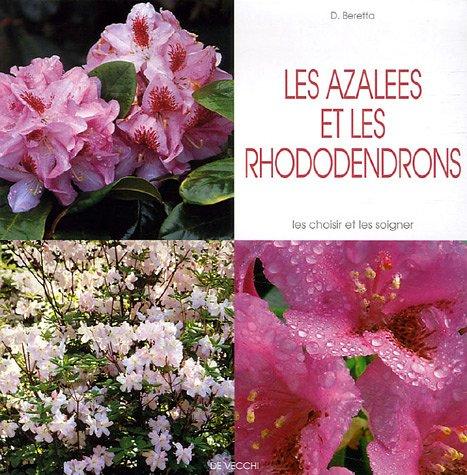 les-azalees-et-les-rhododendrons
