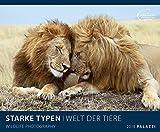 STARKE TYPEN 2018 : WELT DER TIERE - mit charmant-witzigen Bildunterschriften - Tier - Kalender 60 x 50 cm