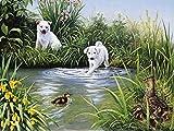 Artland Qualitätsbilder I Bild auf Leinwand Leinwandbilder Wandbilder 60 x 45 cm Tiere Haustiere Huhn Malerei Grün B0TX Weiße Welpen Versuchen Ein Küken zu Fangen