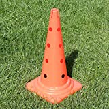 Bild: KombiKegel 50 cm in 4 Farben für Agility  Hundetraining orange