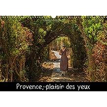 Provence, plaisir des yeux : Un certain regard sur la variété des paysages et la flore de Provence. Calendrier mural A3 horizontal 2016