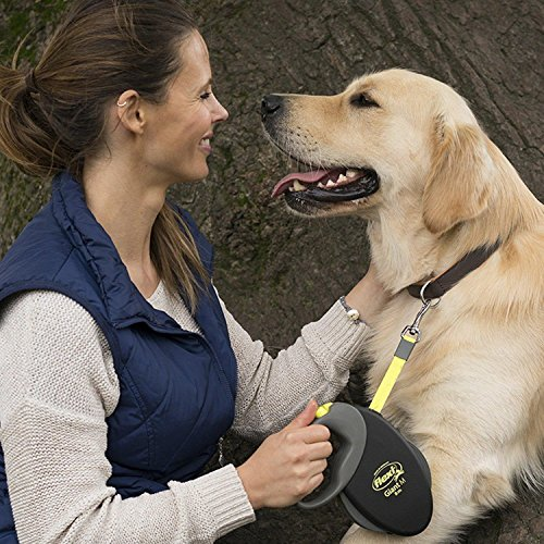 flexi Roll-Leine Giant Professional Gurt 10m schwarz für Hunde bis max. 50 kg - 4