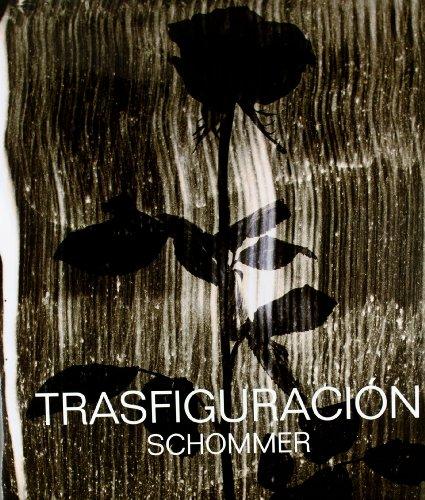 Descargar Libro Trasfiguración de Alberto Schommer