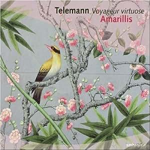 Voyageur Virtuose