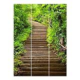 Bilderwelten Schiebegardinen Set - Treppenaufstieg im Wald - 3 Flächenvorhänge, Aufhängungssystem: Ohne Aufhängung, Größe HxB: 250 x 180cm (3 Flächenvorhänge á 250 x 60cm)