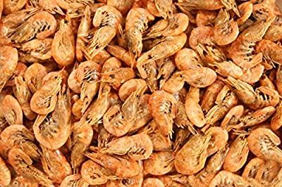 Natural Dried Shrimp Fish Food, Turtle, Terrapin, Reptile Food Aquarium Cichlid Fish Food by GLX