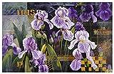 Bai Xue Poster Kunstdruck Bild Flower Competition 58x89cm