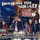Desi Beats, Volume 1 von Panjabi Hit Squad