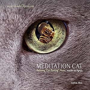 Meditation Cat (SchnurrMusik)