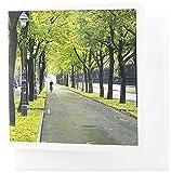 3drose Kopenhagen, Dänemark, City Bike Weg–EU07ist0005–Inti St. Clair–Grußkarten, 15,2x 15,2cm, Set 12(GC 81293_ 2)