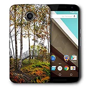 Snoogg Sunshine Forest Designer Protective Phone Back Case Cover For Motorola Nexus 6