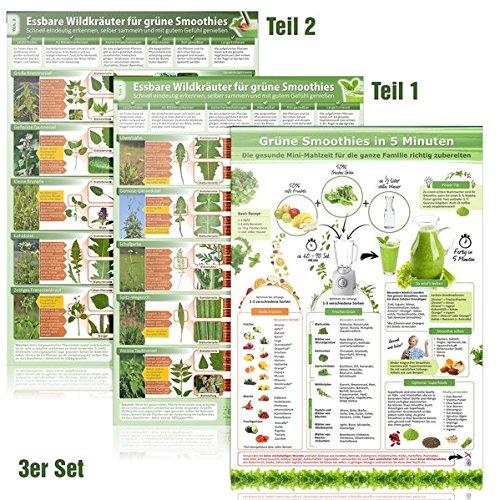 [3er Set] Essbare Wildkräuter für Grüne Smoothies (DINA4) Teil 1 & 2 und Grüne Smoothies in 5 Minuten (2018) - laminiert-Wildkräuter schnell eindeutig ... selber sammeln und mit gutem Gefühl genießen)