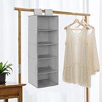Rangement Suspendu avec 5 Compartiments, Étagère Sac de Casier Rangement Vêtements Suspendue Penderie, Wardrobe…