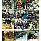 UN CHIEN DANS UN JEU DE QUILLES Photos de film x12-25x30 cm. - 1983 - Pierre Richard,...