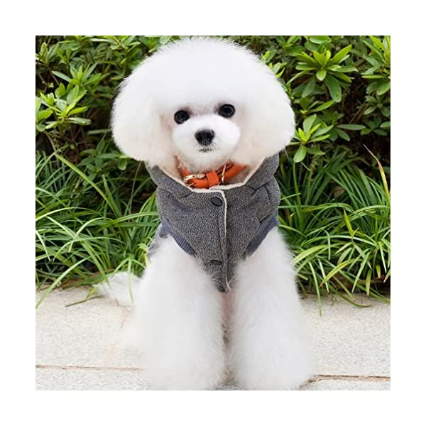 SELMAI Hooded Dog Coat Stylish Small Puppy Dog Clothes(This style run small,pls choose one size larger) 8