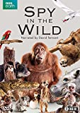 Spy in the Wild (BBC) 2-disc [DVD]