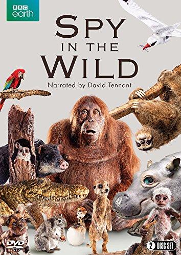 spy-in-the-wild-bbc-2-disc-dvd