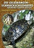Die Gelbwangenschmuckschildkröte: Trachemys Scripta Scripta (Art für Art)