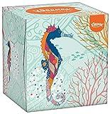 Kleenex-Collection-Pauelos-Faciales-56-Unidades