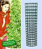 BALDUR-Garten Jiaogulan & Dekorativer Rankturm,1 Set