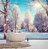 Wand-Wandteppich der Winter-Schneeszenenwohnzimmer moderne pastorale Naturlandschaft große 3D Stereo-Wandschlafzimmerhintergrundwand, 430 × 280cm