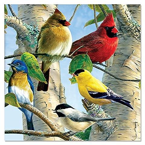 Tree Free Favourite Songbirds Eco Magnet, Metal, Multi-Colour