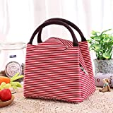 MAX HOME® Portable Lunch Bag Thermal Food Picnic Lunch Bags for Women Kids