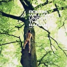 Under the Radar, Vol. 2 (Deluxe) [Explicit]