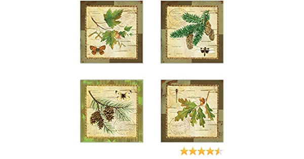 CoasterStone AS10071 A Walk in The Woods Absorbent Coasters 4-1//4-Inch Set of 4