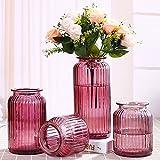TD Vierteilige Glasvase Dekoration Europäischen Restaurant Transparentem Glas Hydroponischen Vase (Farbe : 3)