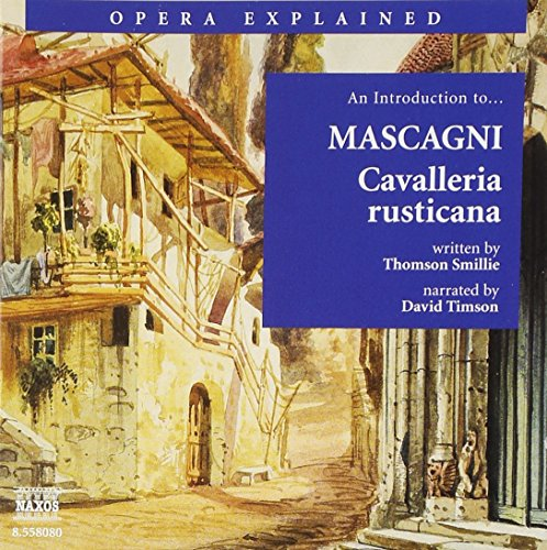 An Introduction to Mascagni: