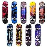 Skateboard Deck Funboard Holzboard komplett 80x20cm Ahornhol