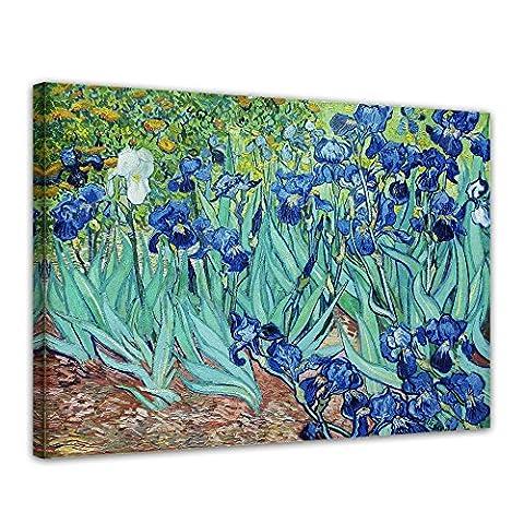 Kunstdruck - Vincent van Gogh - Iris - 50x40cm einteilig - Alte Meister - Leinwandbilder - Bilder als Leinwanddruck - Bild auf Leinwand - Wandbild von Bilderdepot24